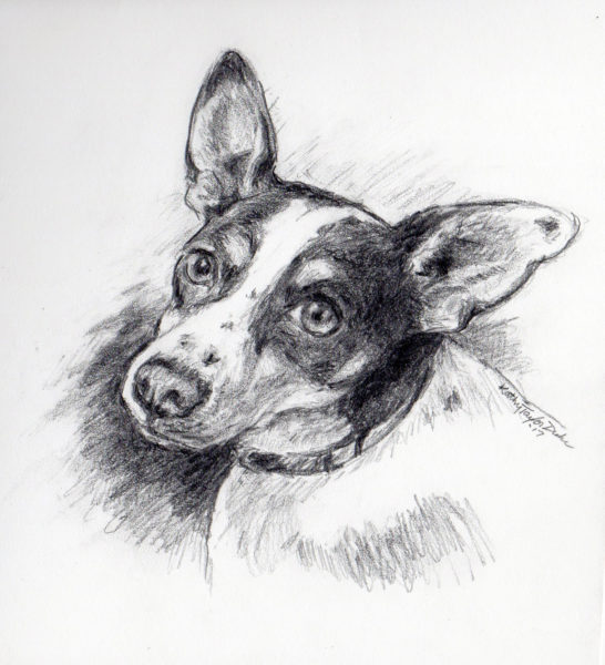 """5""""x7"""" graphite drawing on paper by Kathy Taylor Duke"""
