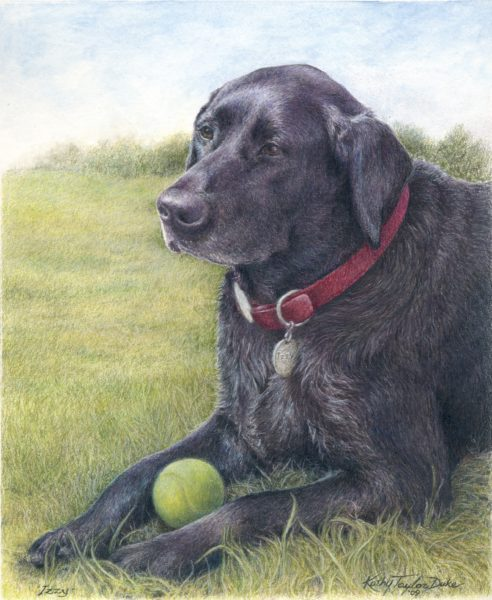 ktdukeartist-dog portrait-watercolor and colored pencil-izzy