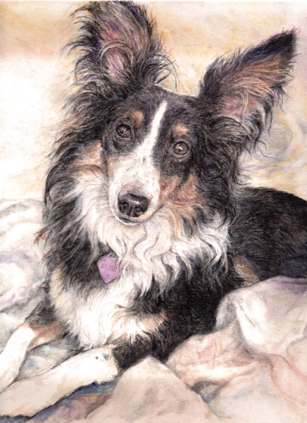 ktdukeartist-dog portrait-watercolor and acrylic-kiera
