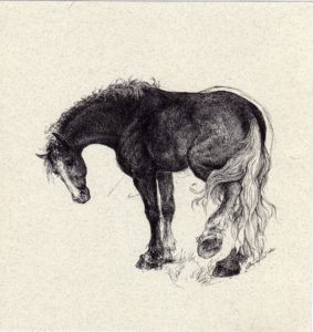 ktdukeartist-horses-ink drawing-before i met you
