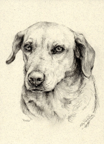 5x7 pencil portrait by Kathy Taylor Duke