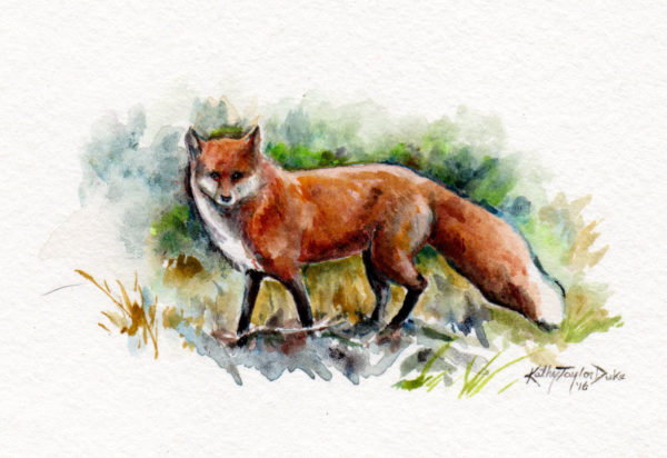 ktdukeartist-fox-watercolor-fox