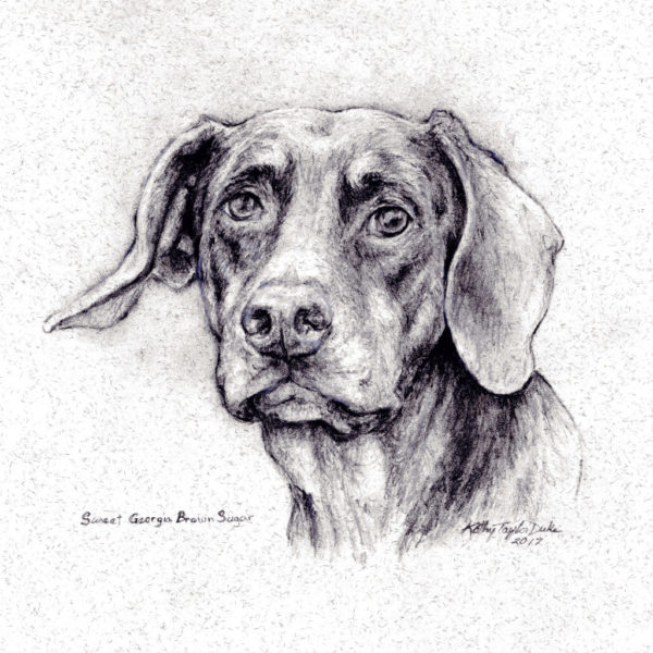 Dog image created with pencil