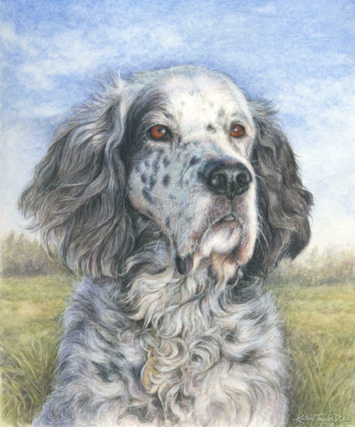 ktdukeartist-dog portrait-watercolor and colored pencil-sadie1