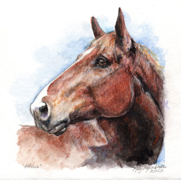ktdukeartist-horse portrait-watercolor & colored pencil-atticus