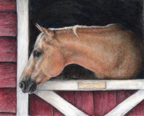 """10""""x8"""" watercolor and colored pencil portrait of palomino paint horse, """"Pawnee Nation"""" aka """"Dozie"""", looking out of her stall window"""