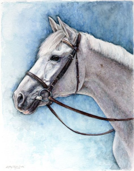 Portrait of eventing horse S.S. Armani, also known as George, painted in watercolor and colored pencil